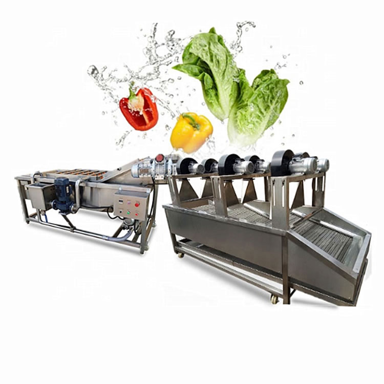 Vegetable Fruit Cleaning Machine